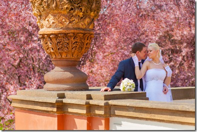 Прага Свадебные фотографии 0006_